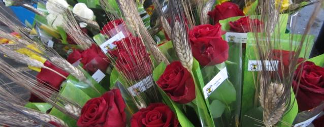 Roses solidàries per Sant Jordi